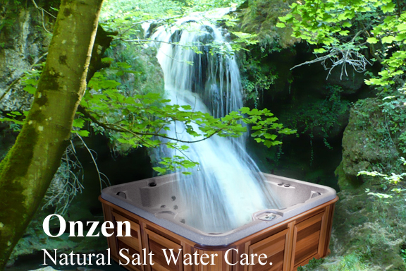 Onzen Salt Water System Lansing, MI   Heat'N Sweep