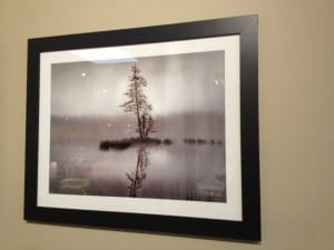 Framed Picture Art